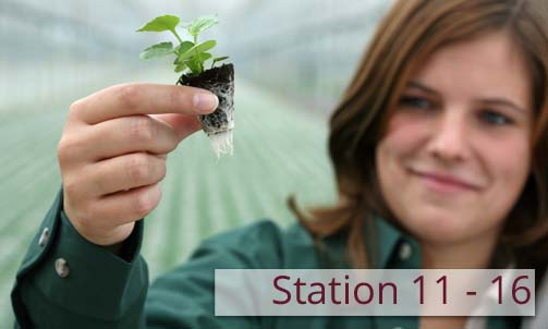 Stationen 11 – 16: The Uses of Peat – Yesterday and Today